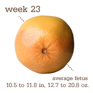 week23fruit